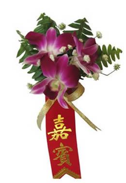 �W上�花-石斛�m胸花