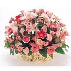 鲜花礼品店-祝您健康