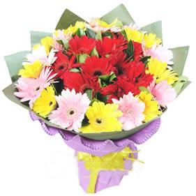 鲜花公司-幸福一生