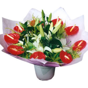 鲜花礼品店-想你的心