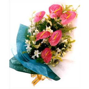 鲜花礼品-特别的祝福