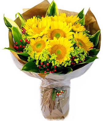 鲜花订购-我的小太阳