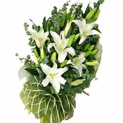鲜花店-绿色心情