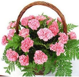 预订鲜花-幸福之花