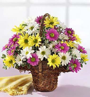 送花-祝福相伴