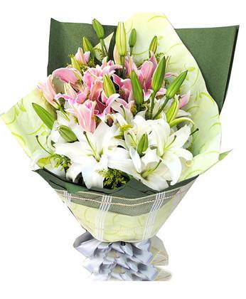 鲜花公司-祝福