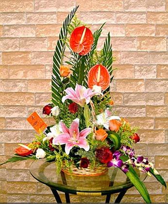 鲜花网-新年快乐