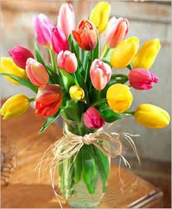 �r花�W站-迷人的春色