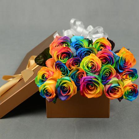 �W�j�花-彩虹玫瑰-�矍榈念�色