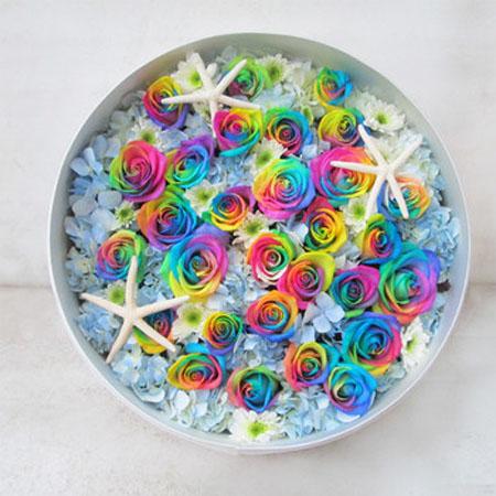 送花-彩虹玫瑰-七彩的��
