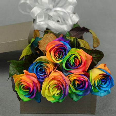 �花-彩虹玫瑰-�鄣拇��r