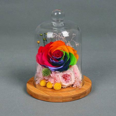 鲜花定购-永生花 单朵彩虹玫瑰
