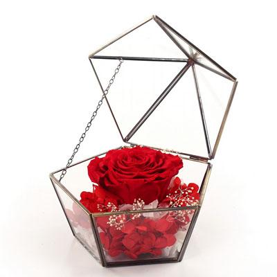 预订鲜花-五星玻璃花房 单朵红色