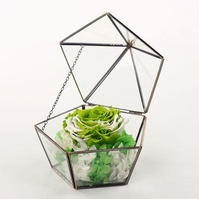鲜花速递网-五星玻璃花房 单朵绿色