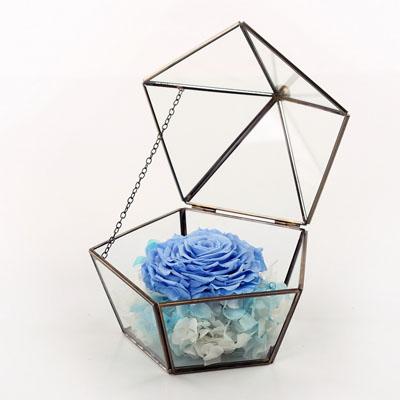 鲜花定购-五星玻璃花房 单朵浅蓝