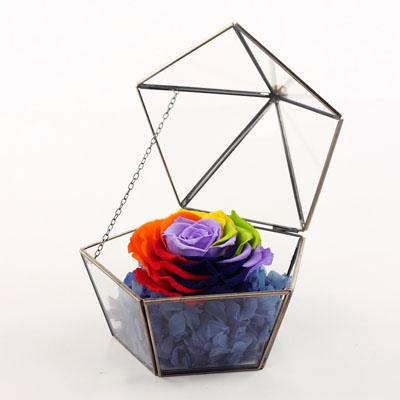 鲜花快递网-五星玻璃花房 七彩玫瑰