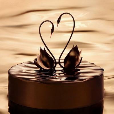 黑天鹅买蛋糕加盟-黑天鹅 幸福时光