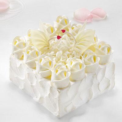 黑天鹅生日蛋糕-黑天鹅 天使之爱