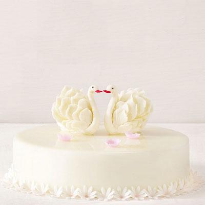 黑天鹅送蛋糕-黑天鹅 美丽人生