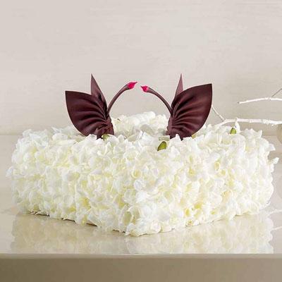 巧克力蛋糕-黑天鹅 至美