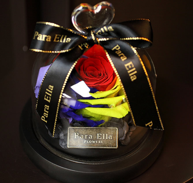 彩色玫瑰-永生花-最美�矍�